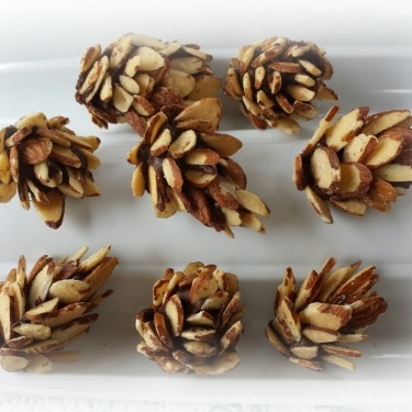 almond acorns2